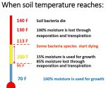 Soil temperature.JPG