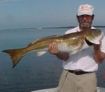 Redfish Blue claw imi.jpg